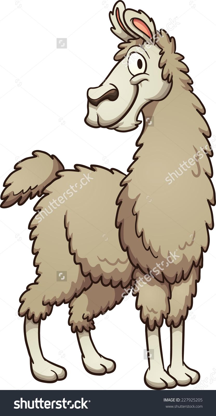 Llama image clipart.
