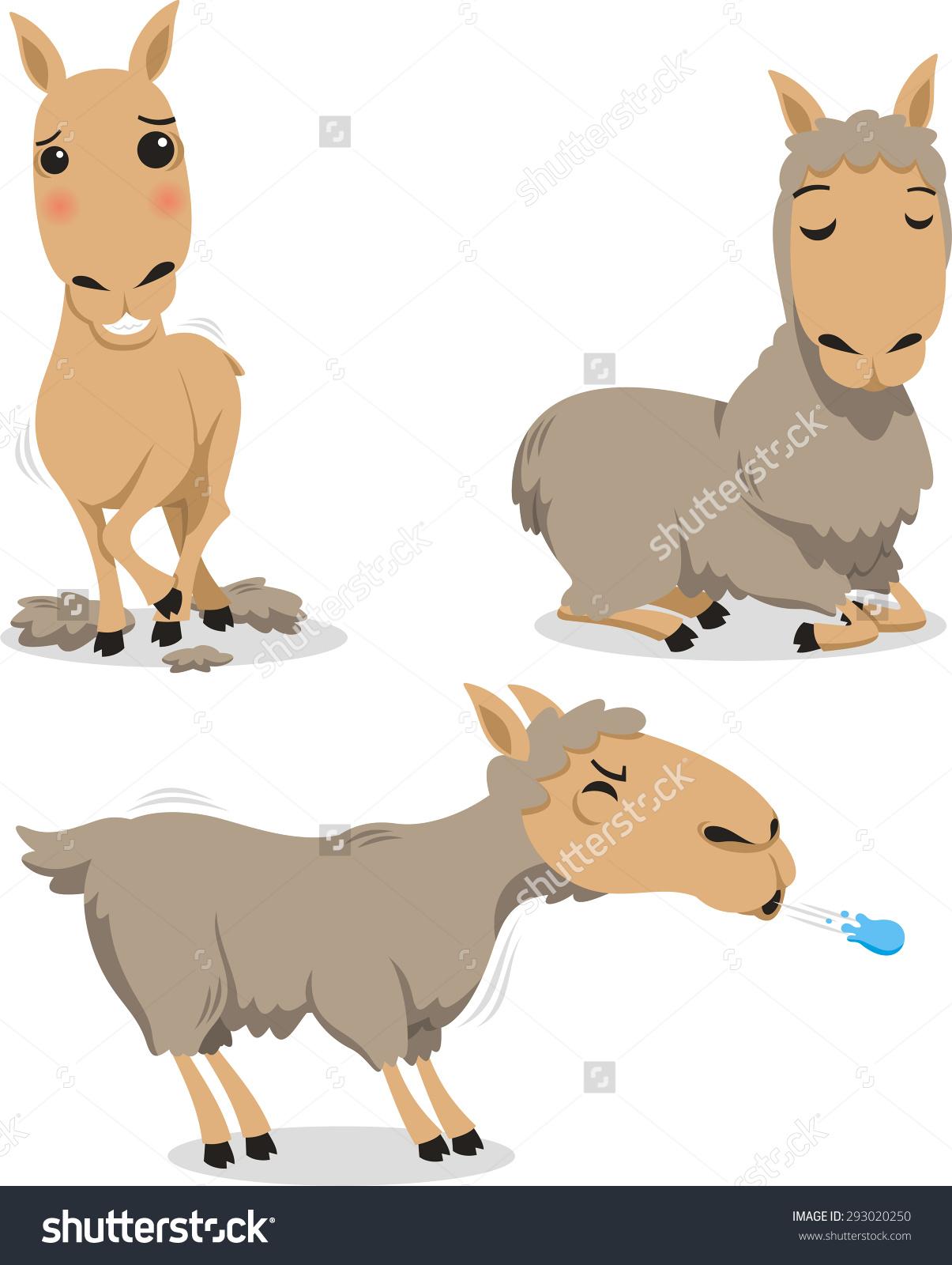 Peru llama spit clipart gif.
