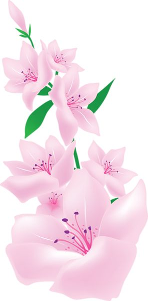 Light Pink Painted Flowers Clipart.