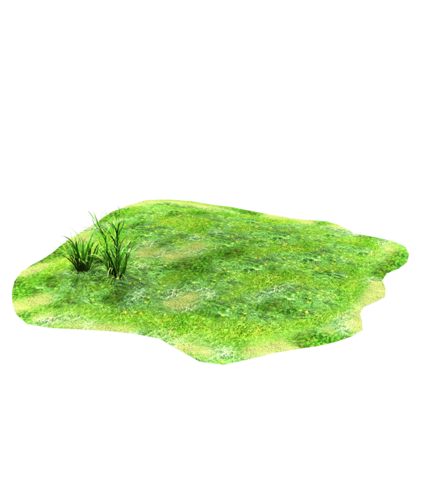 Clipart grass patch.