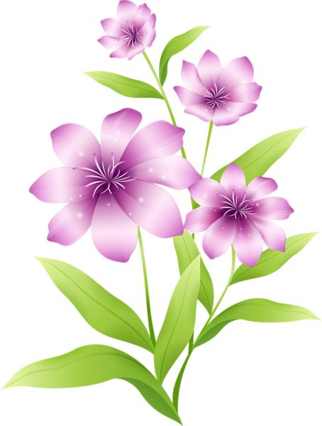 Large Light Pink Flowers Clipart.