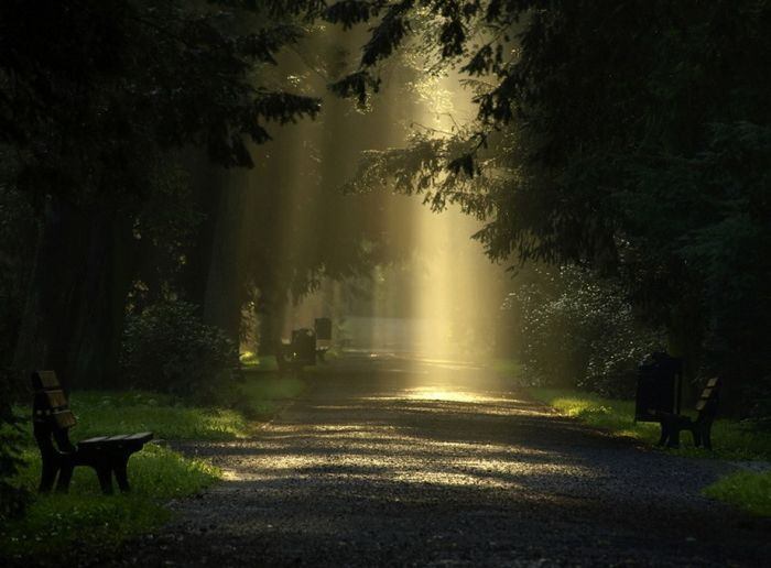1000+ images about Light and Shadows on Pinterest.