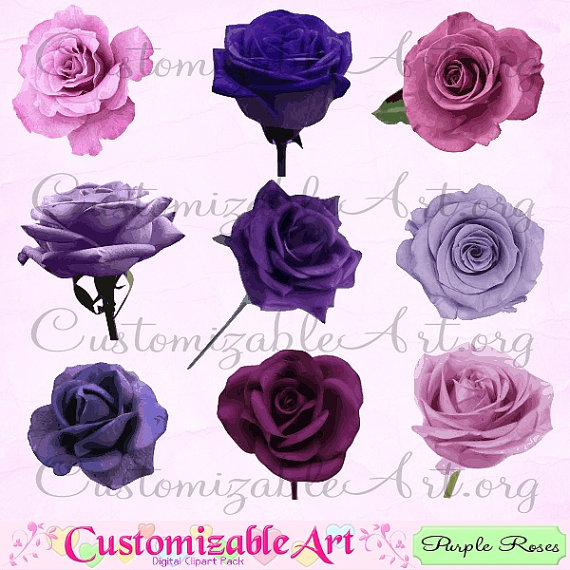Purple Rose Clip Art Digital Purple Rose Clipart Purple Flower by.