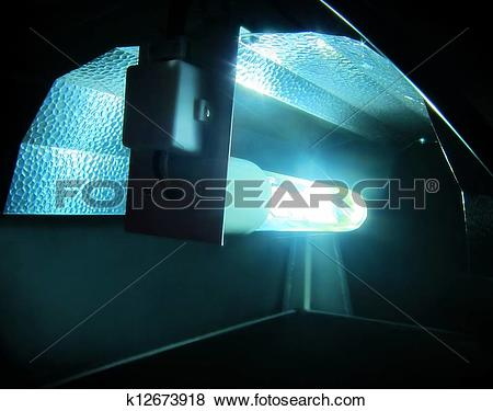 Pictures of Hydroponic light / lighting system k12673918.
