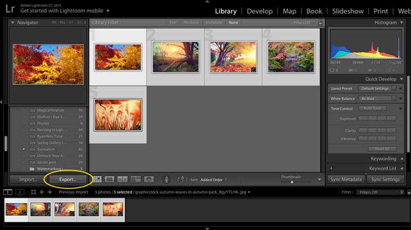 How to Add a Watermark in Adobe Lightroom.