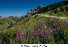 Pictures of Ligurian Alps.