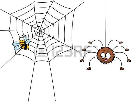 Web Spinning Spiders Stock Photos & Pictures. Royalty Free Web.