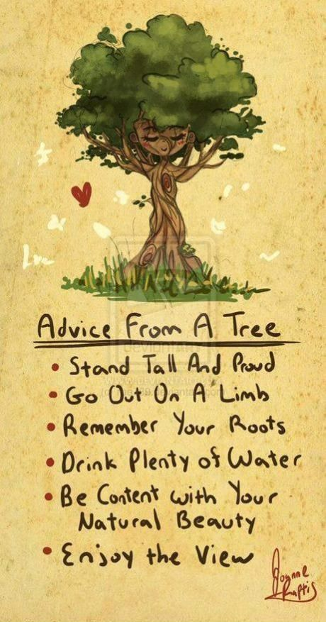 Stand Tall Like A Tree Clipart.
