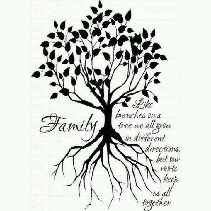 Family tree clipart pictures.