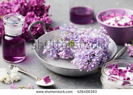 Lilac Gray Stock Photos, Royalty.