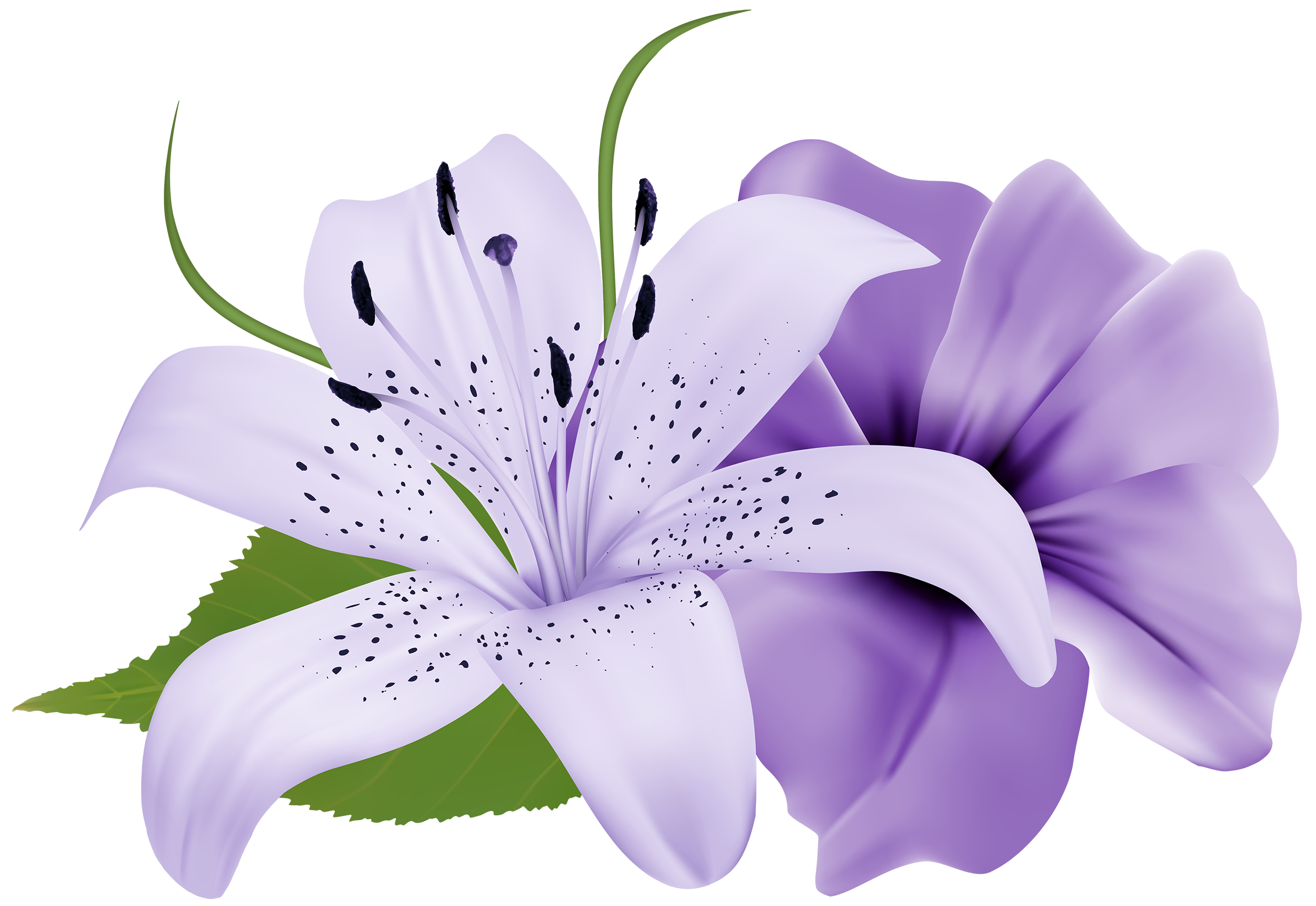 Purple Deco Flowers PNG Clipart.