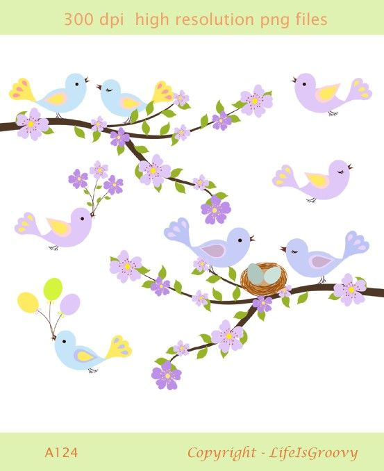 1000+ images about Bird clipart on Pinterest.