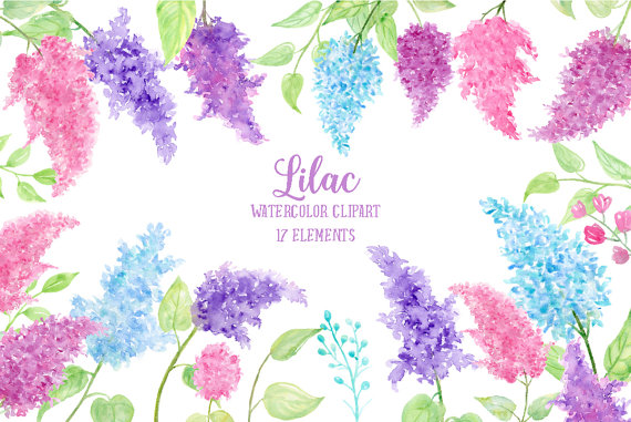 Watercolor Clipart Lilac pink blue and purple by CornerCroft.