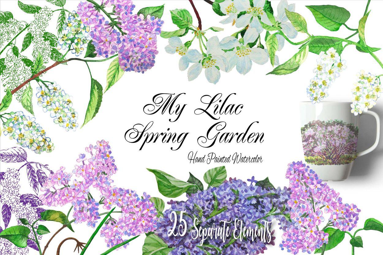 Lilac Spring Garden Clipart.