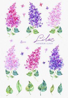 Stylized Poppy Flowers Illustration.