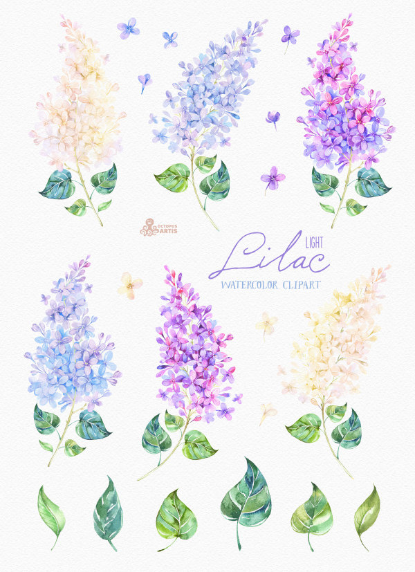 Lilac Light. Watercolor Clipart, card, floral elements, wedding.