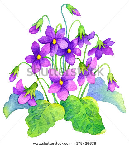 Pictures Of Purple Flower Stock Photos, Royalty.