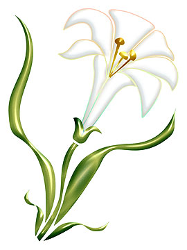 Easter Lily Clipart.