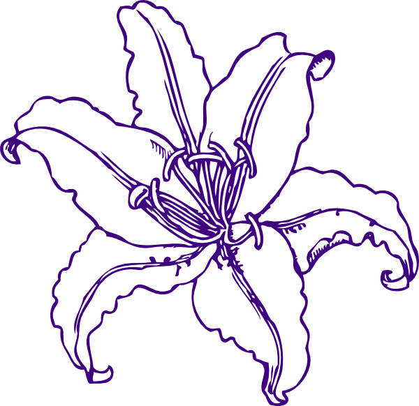 Purple Lily Clipart.