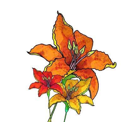 Lilium Bulbiferum Greetings Card 14x14cm (blank inside).