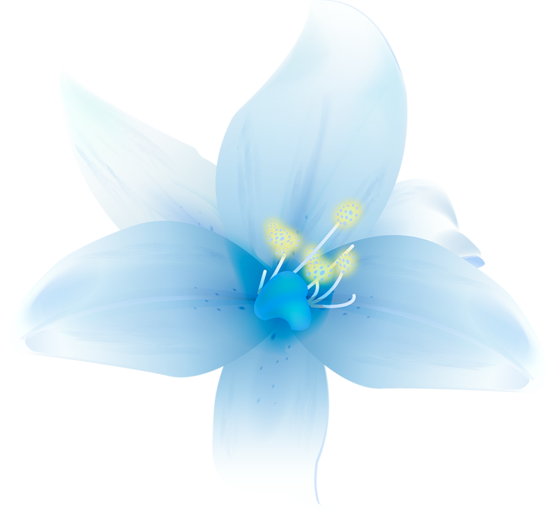 Large_White_Lilium_Clipart.png?m=1366495200.