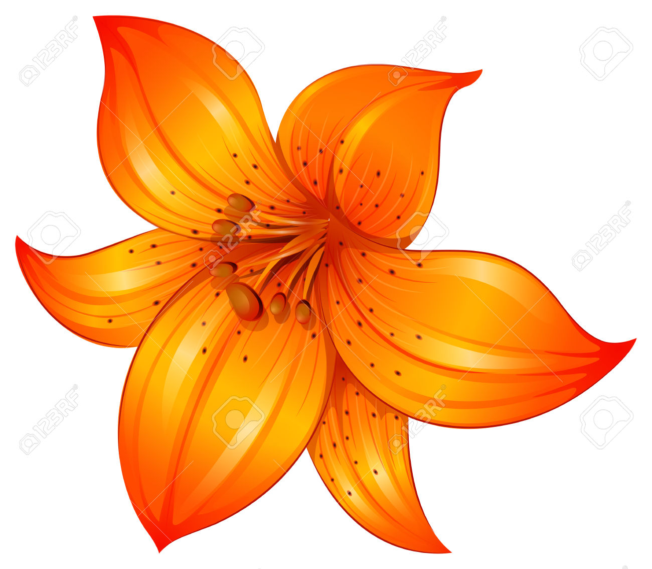 198 Lilium Cliparts, Stock Vector And Royalty Free Lilium.