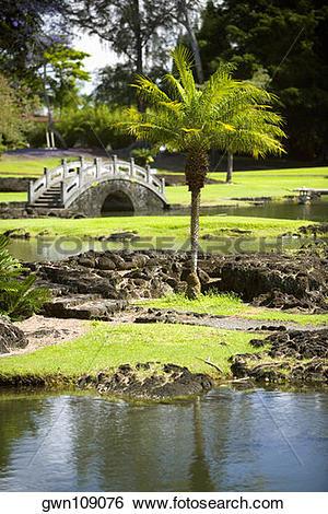 Stock Images of Footbridge across a river, Liliuokalani Park and.