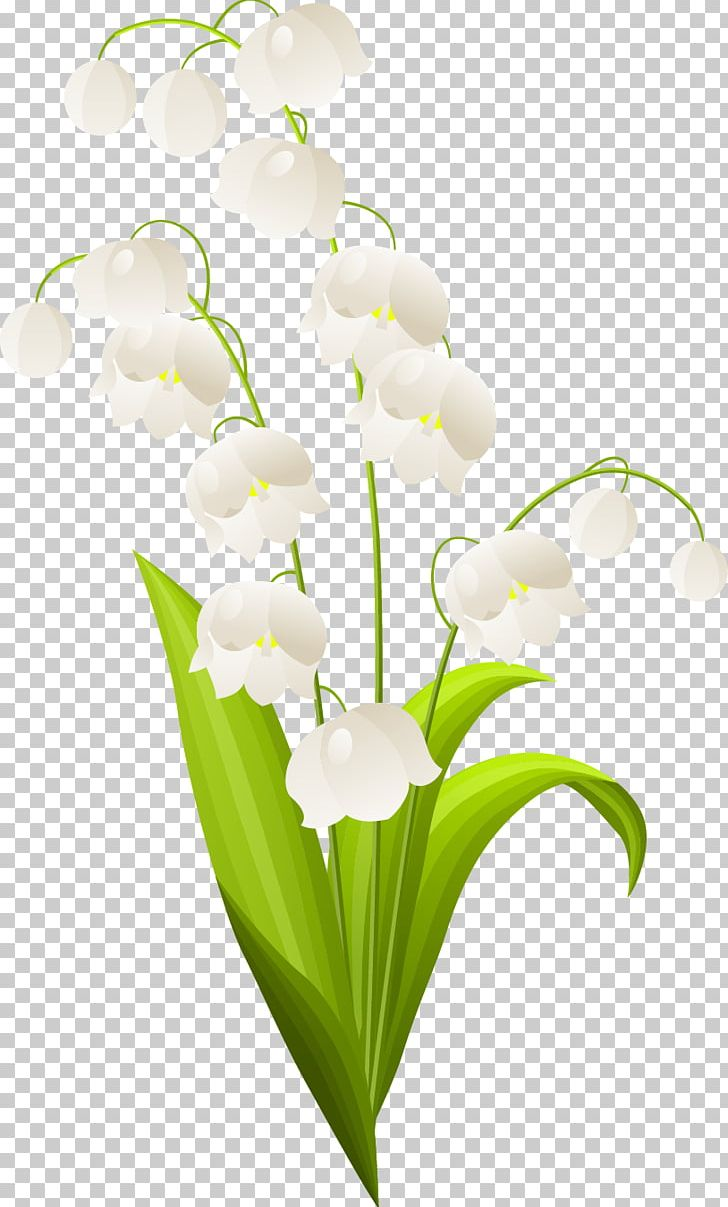 Lily Of The Valley Flower PNG, Clipart, Art, Clip Art, Cut.