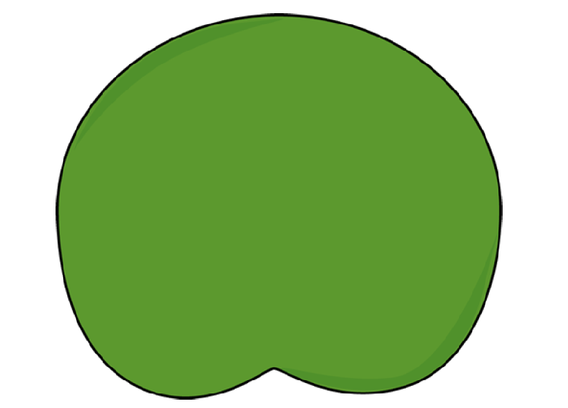 Lily pad clipart free 2 » Clipart Station.
