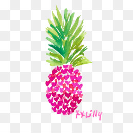 Lilly Pulitzer PNG and Lilly Pulitzer Transparent Clipart.