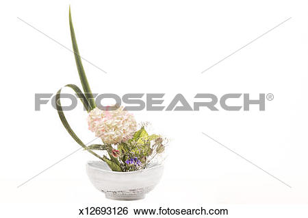 Stock Images of Japanese flower arranging ikebana x12693126.