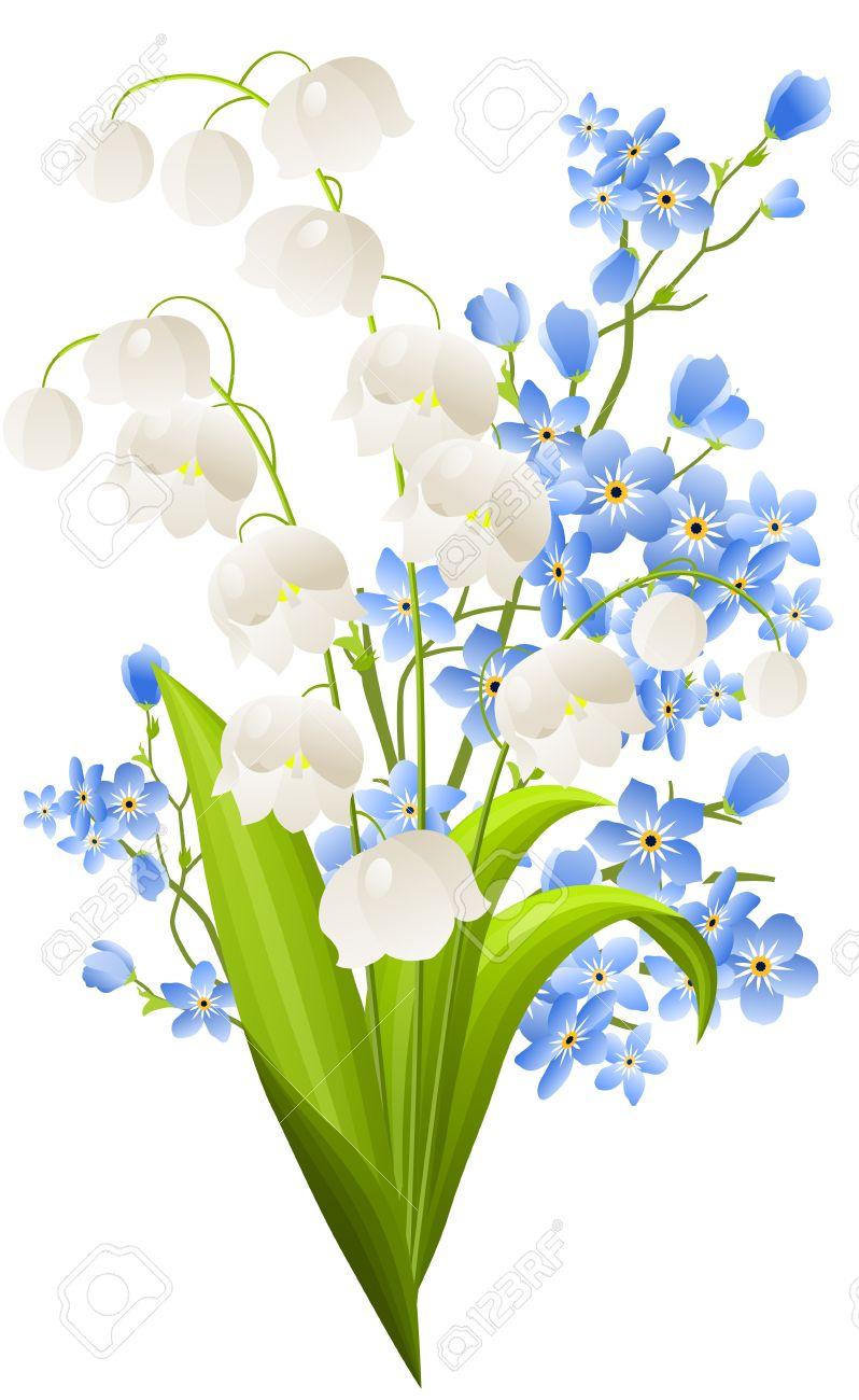 Bunch Of Lilies Of The Valley Royalty Free Cliparts, Vectors, And.