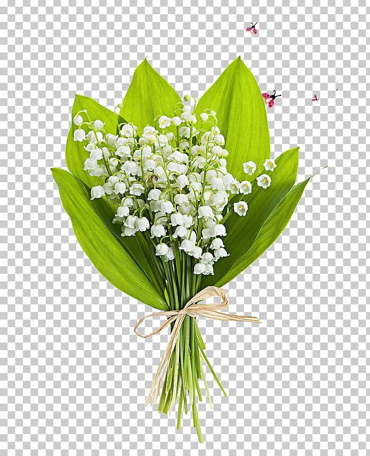 Lily Of The Valley Flower Bouquet Stock Photography Perfume.