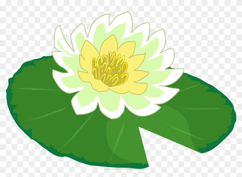 Download Free png White Flower Water Lily Clipart The.