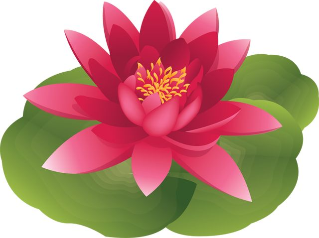 Water Lily Clip Art Free.