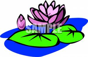 Purple Water Lily Clip Art Image.