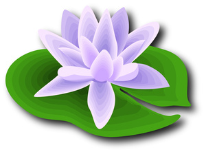 Cartoon lily pad clipart.