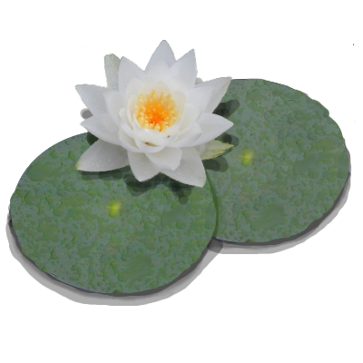 Download Free png Download Free png Lily Pad PNG Transparent.