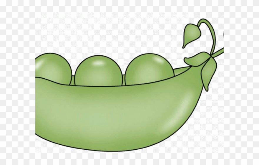 Lima Beans Clipart Bowl Pea.