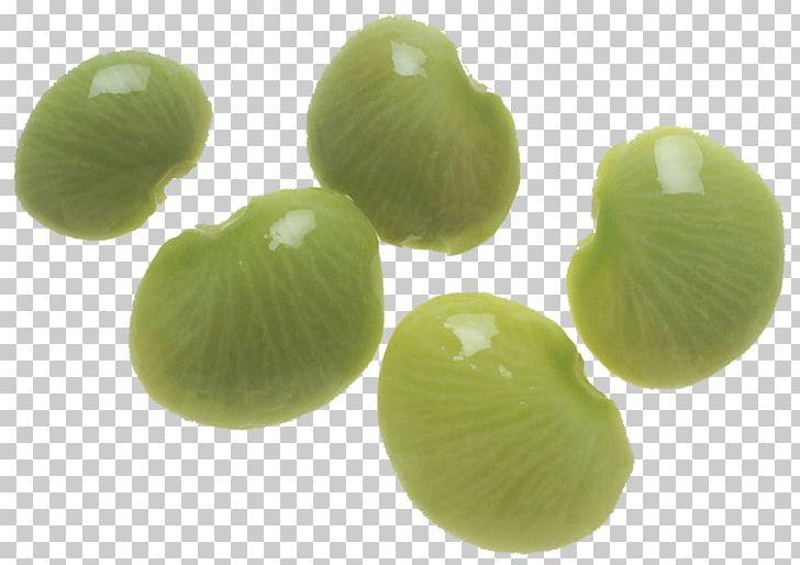 Vegetarian Cuisine Lima Bean Succotash Legumes PNG, Clipart.