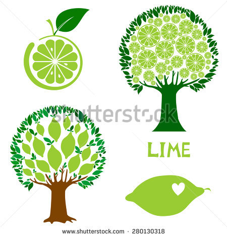 Lime Tree Stock Photos, Royalty.