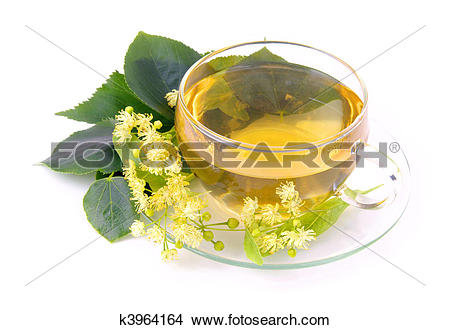 Stock Photo of tea from lime blossom k3964164.