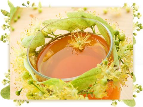 Lime (Linden) Blossom perfume ingredient, Lime (Linden) Blossom.