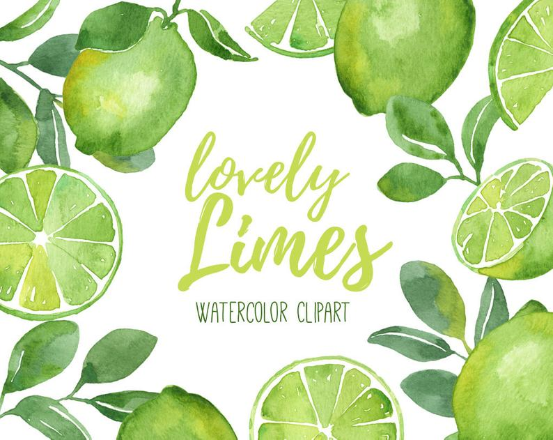 Lime Clipart, Watercolor Lime Clipart, Fruit Clip Art, Citrus Fruit  Clipart, Limes, Watercolor Fruit Clipart, Lime Slices, Tropical, Summer.