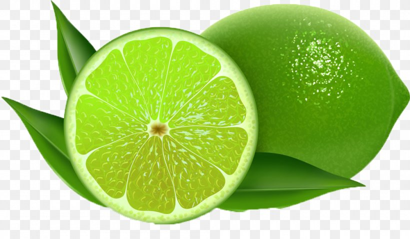 Lemon Persian Lime Key Lime Clip Art, PNG, 1000x583px, Lemon.