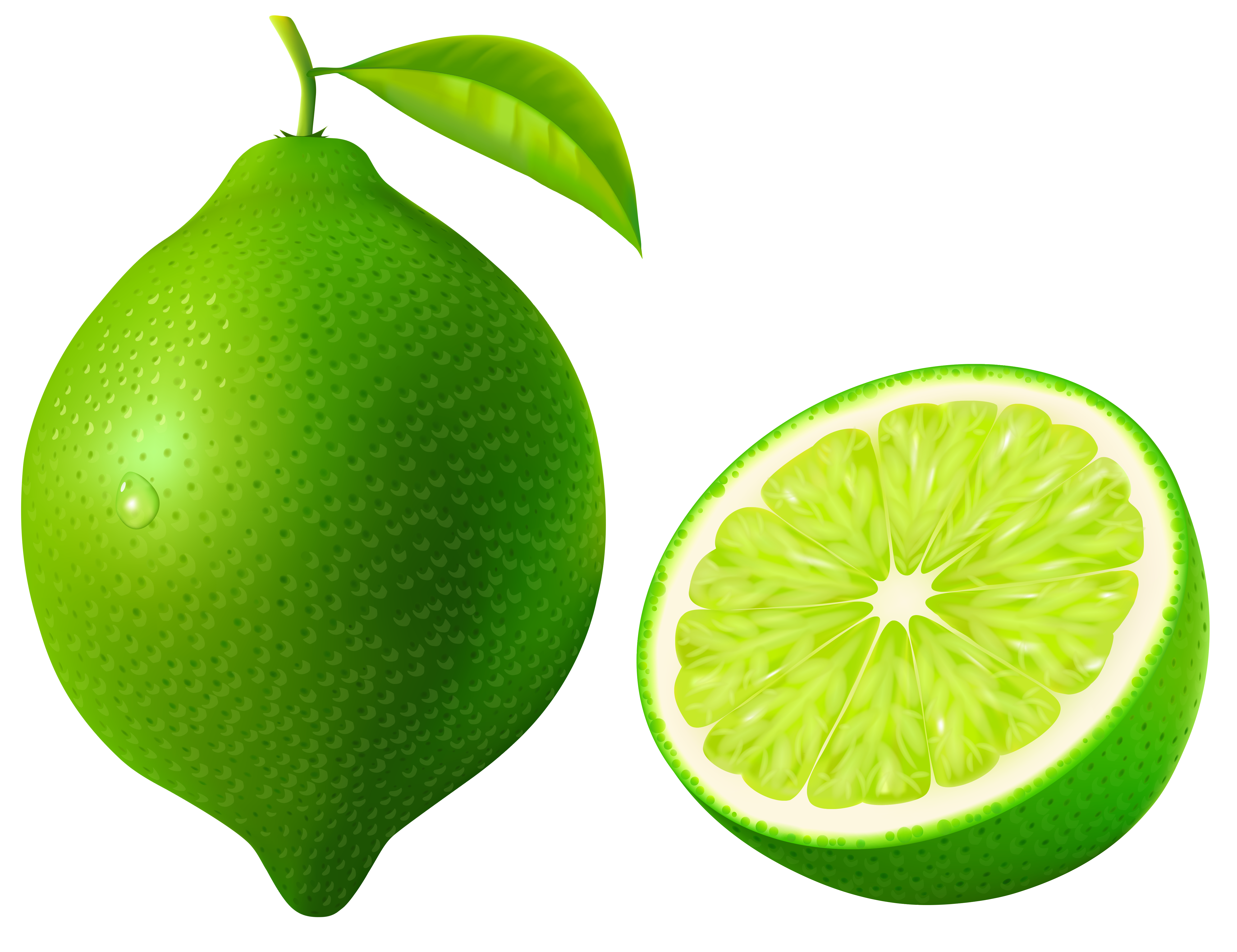 Limes clipart #7