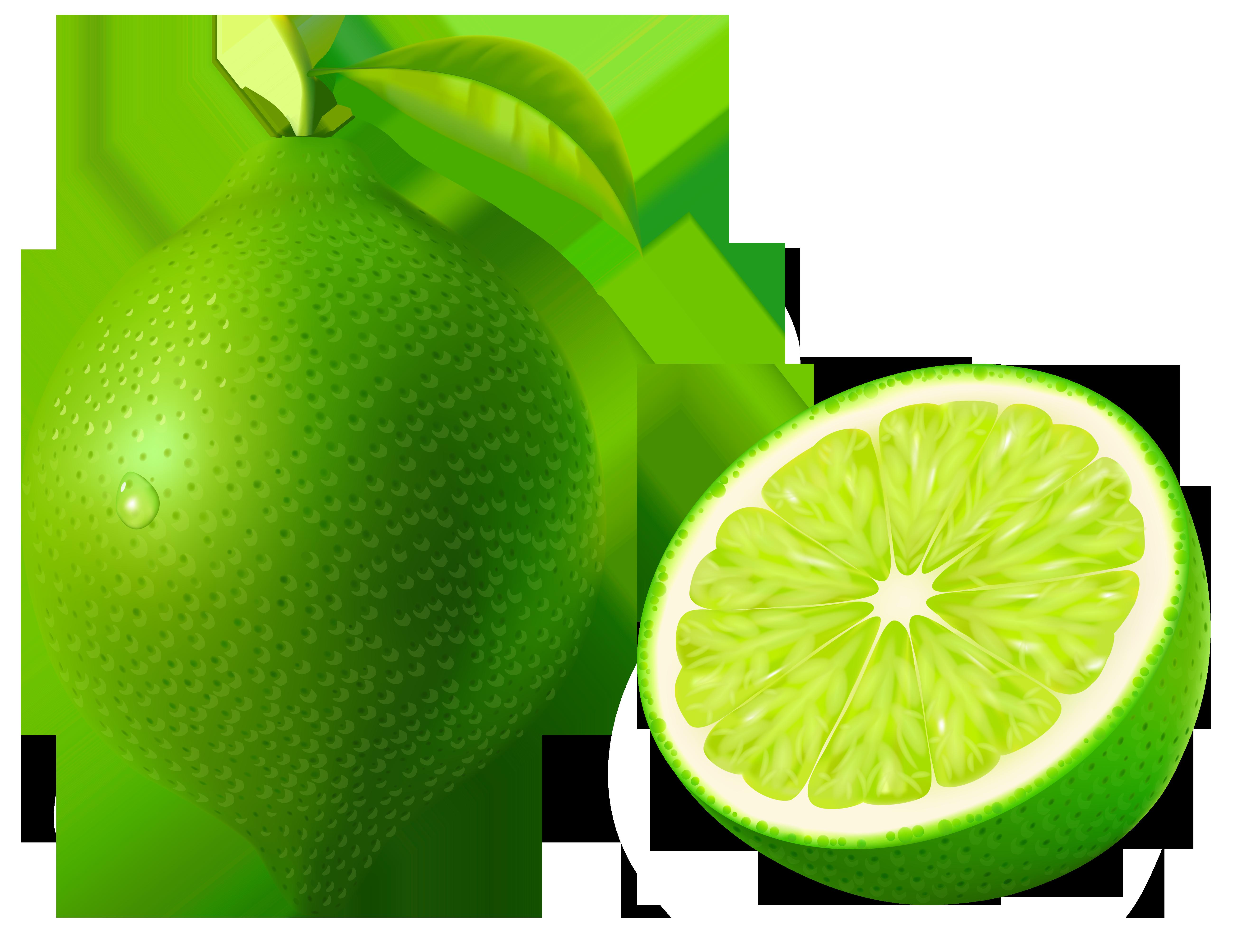 Lime Fruit Clip Art.