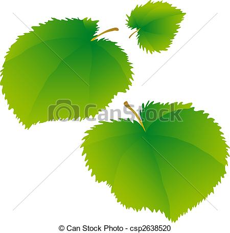 Vector Clipart of Lime leaves.