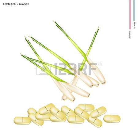 646 Tablet Grass Stock Vector Illustration And Royalty Free Tablet.