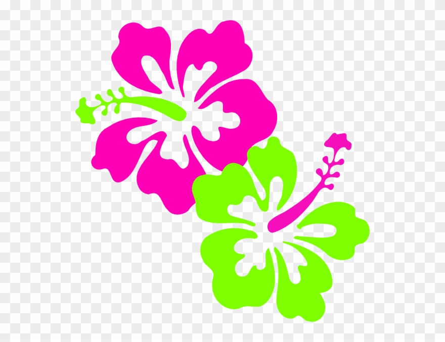 Download Hibiscus Pink Lime Green Clip Art At.